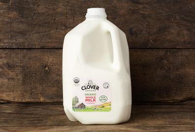 Thumb 400 clover organic whole milk gal